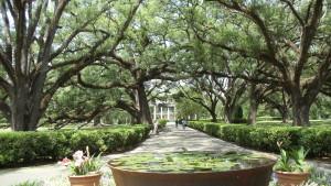 New Orleans Mansion1
