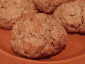 Oatmeal Butterscotch Chip