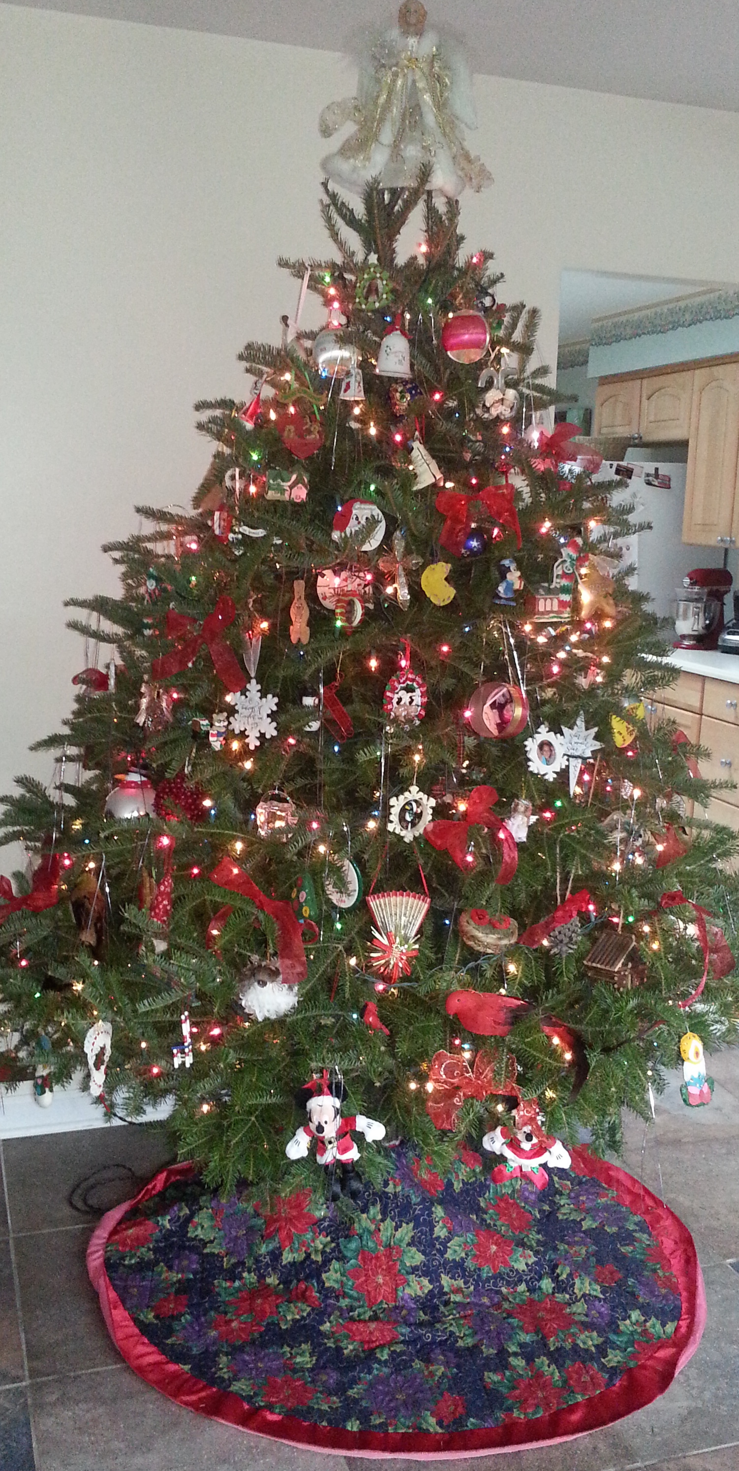 how to keep a christmas tree alive all year