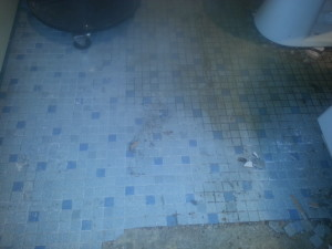Bathroom Floor2