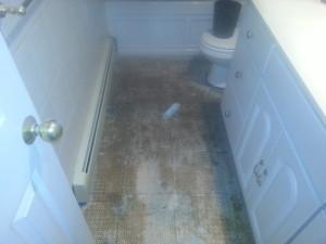 Bathroom Floor3
